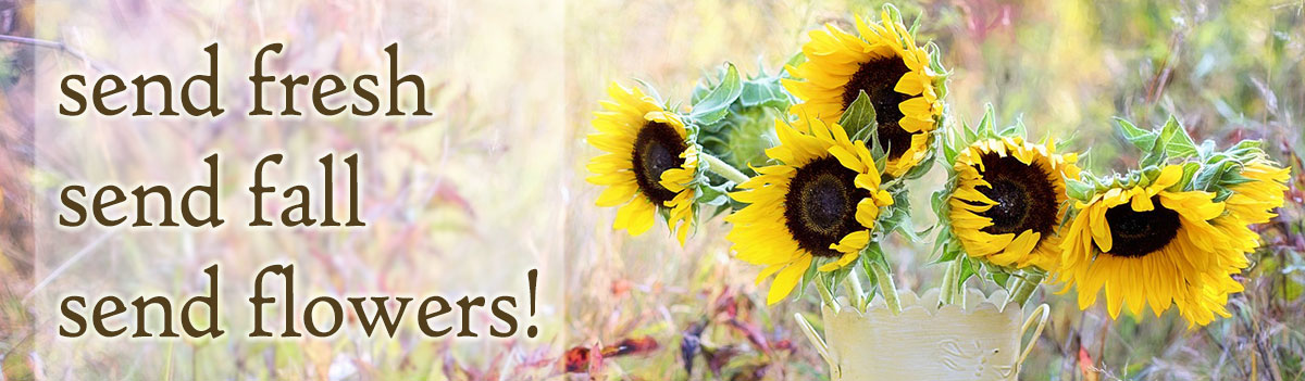 Send fresh autumn flowers, fall flowers, fall plants, and more