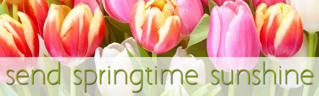 Send Springtime Sunshine with fresh flowers. Click here to order today!