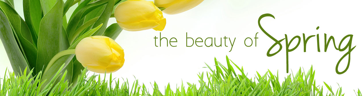 Share the beauty of spring with fresh flowers. Click here to order today!