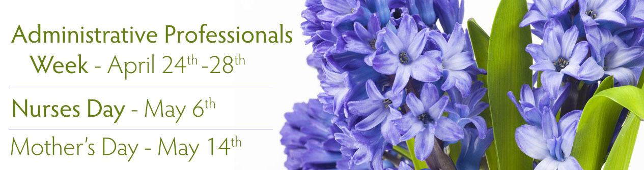Spring holidays are here! Celebrate with a bouquet of fresh spring flowers today!